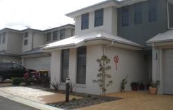 P Oak Tree Dural 011